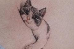 Наколка : Животные, Кошка на груди