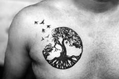 Наколка : Деревья, Птицы на груди