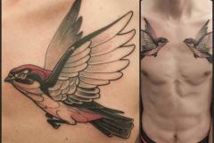 Татуировка : Птицы, Цветные, Ласточка на груди