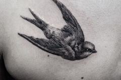 Тату : Птицы, Ласточка на груди