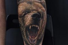 Татуировка : Животные, Цветные, Медведь на голени (икре)
