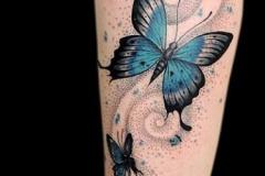 Татушка : Бабочка, Цветные на голени (икре)