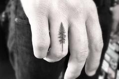 Татушка : Деревья на пальцах