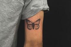 Татуировка : Бабочка на плече