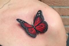 Тату : Цветные, Бабочка на плече