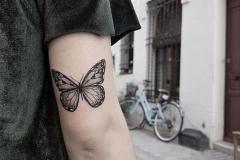 Наколка : Бабочка на плече