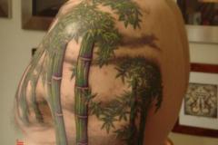 Татушка : Цветные, Деревья на плече