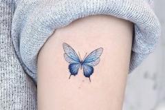 Татуировка : Цветные, Бабочка на плече