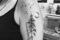 Наколка : Деревья, Луна, Звезды, Зодиак на плече
