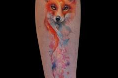 Татуировка : Лиса, Цветные на предплечье