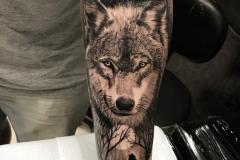 Наколка : Волк, Животные, Луна на предплечье