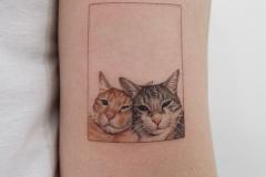 Наколка : Кошка, Животные, Цветные на предплечье