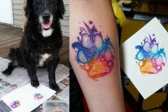 Наколка : Собака, Узор, Цветные на предплечье
