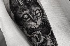 Тату : Демон, Кошка, Животные на предплечье