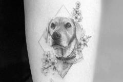 Татуировка : Собака, Животные на предплечье