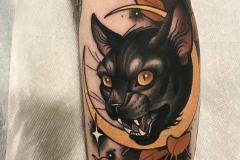 Наколка : Кошка, Животные, Луна, Цветные на предплечье