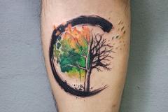 Татуировка : Деревья, Цветные на предплечье