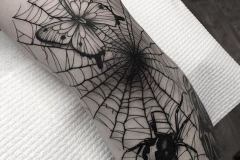 Татуировка : Паук, Бабочка, Паутина на предплечье
