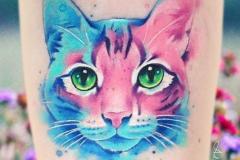 Наколка : Животные, Кошка, Цветные на предплечье