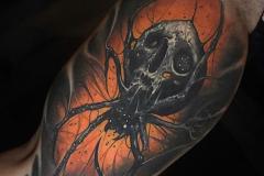 Татуировка : Паук, Череп на предплечье