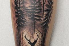 Татуировка : Животные, Деревья на предплечье