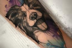 Татуировка : Собака, Животные, Цветные на предплечье