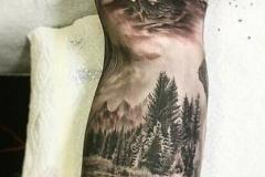 Тату : Медведь, Животные, Горы, Деревья, Рукав на предплечье