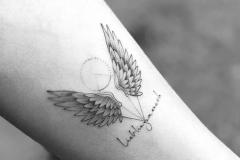 Наколка : Крылья на предплечье