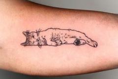 Татуировка : Животные, Кошка на предплечье