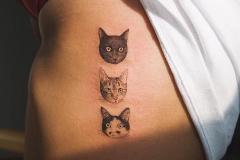 Наколка : Животные, Кошка на ребрах