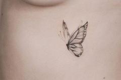 Татуировка : Бабочка на ребрах