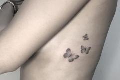 Наколка : Бабочка на ребрах