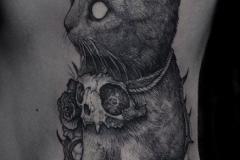 Татуировка : Животные, Кошка, Демон на ребрах