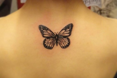 Татуировка : Бабочка на спине