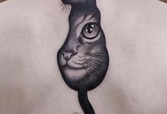 Наколка : Животные, Кошка на спине