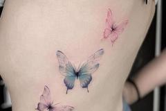 Тату : Бабочка, Цветные на спине