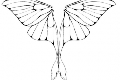 Тату : Крылья