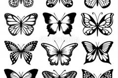 Татушка : Бабочка