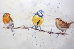 Татушка : Птицы, Цветные