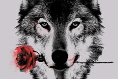 Татуировка : Цветные, Роза, Волк, Животные, Цветы