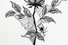 Наколка : Цветы, Роза, Паук, Паутина - эскиз