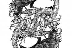 Татушка : Ворон, Птицы