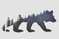 Тату : Медведь, Животные