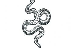 Наколка : Змея