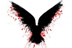 Татуировка : Птицы, Цветные, Ворон