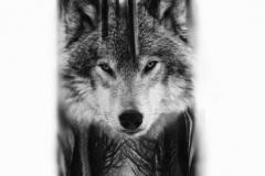 Наколка : Волк, Животные
