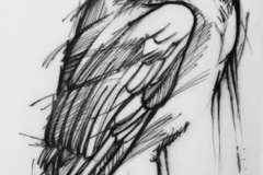 Наколка : Птицы, Сова