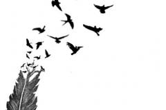 Татуировка : Ворон, Перо, Птицы