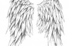 Наколка : Крылья