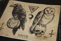 Тату : Ворон, Сова, Птицы